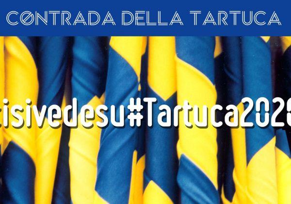 Cisivedesu#Tartuca2020