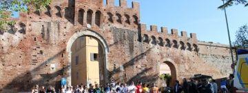 Montalcino 2012