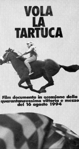 """""""VOLA LA TARTUCA"""""""