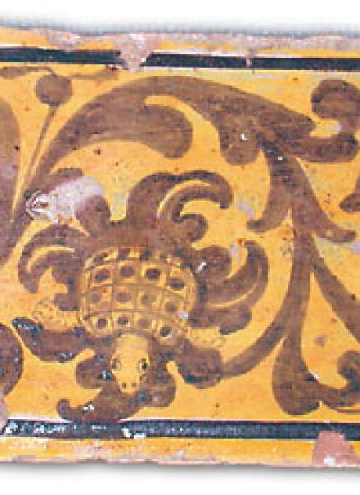 Cinque secoli di Tartuca