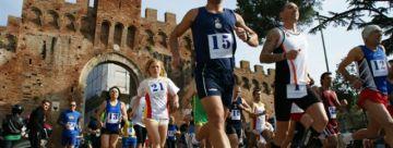 Montalcino 2010